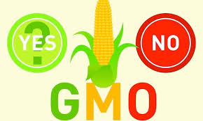 Genetically Modified Organisms: Facts vs. Fiction